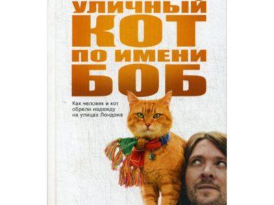 Уличный кот по имени Боб (кинообложка). Как человек и кот обрели надежду на улицах Лондона. Боуэн Дж.
