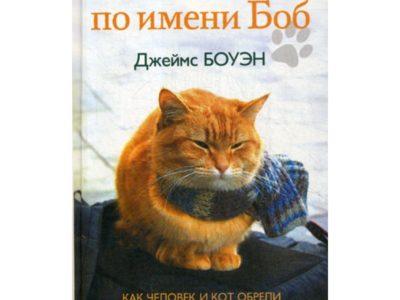 Уличный кот по имени Боб. Как человек и кот обрели надежду на улицах Лондона. Боуэн Дж.
