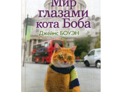 Мир глазами кота Боба. Новые приключения человека и его рыжего друга. Боуэн Дж.
