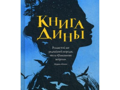 Книга Дины: роман. Вассму Х.