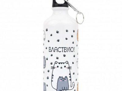 Металлическая бутылка с крышкой Властвую