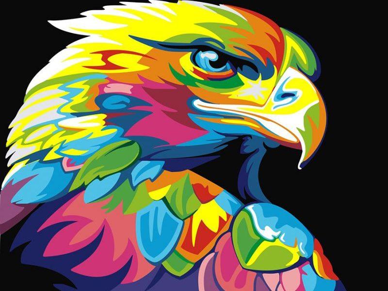 Картина по номерам Радужный орел