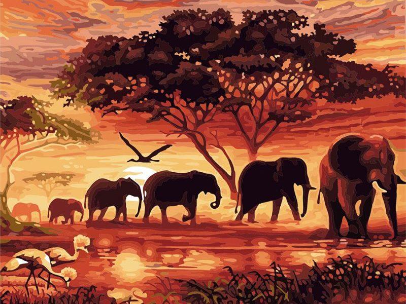 Картина по номерам Слоны в Африке
