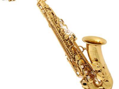 Подарочный сертификат на 5 индивидуальных занятий в First music family Саксофон