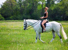 Верховая езда для двоих
