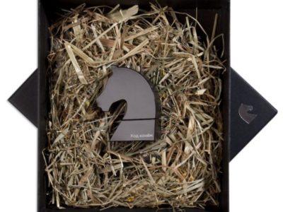 USB-Флешка Ход конем черная 8 Гб